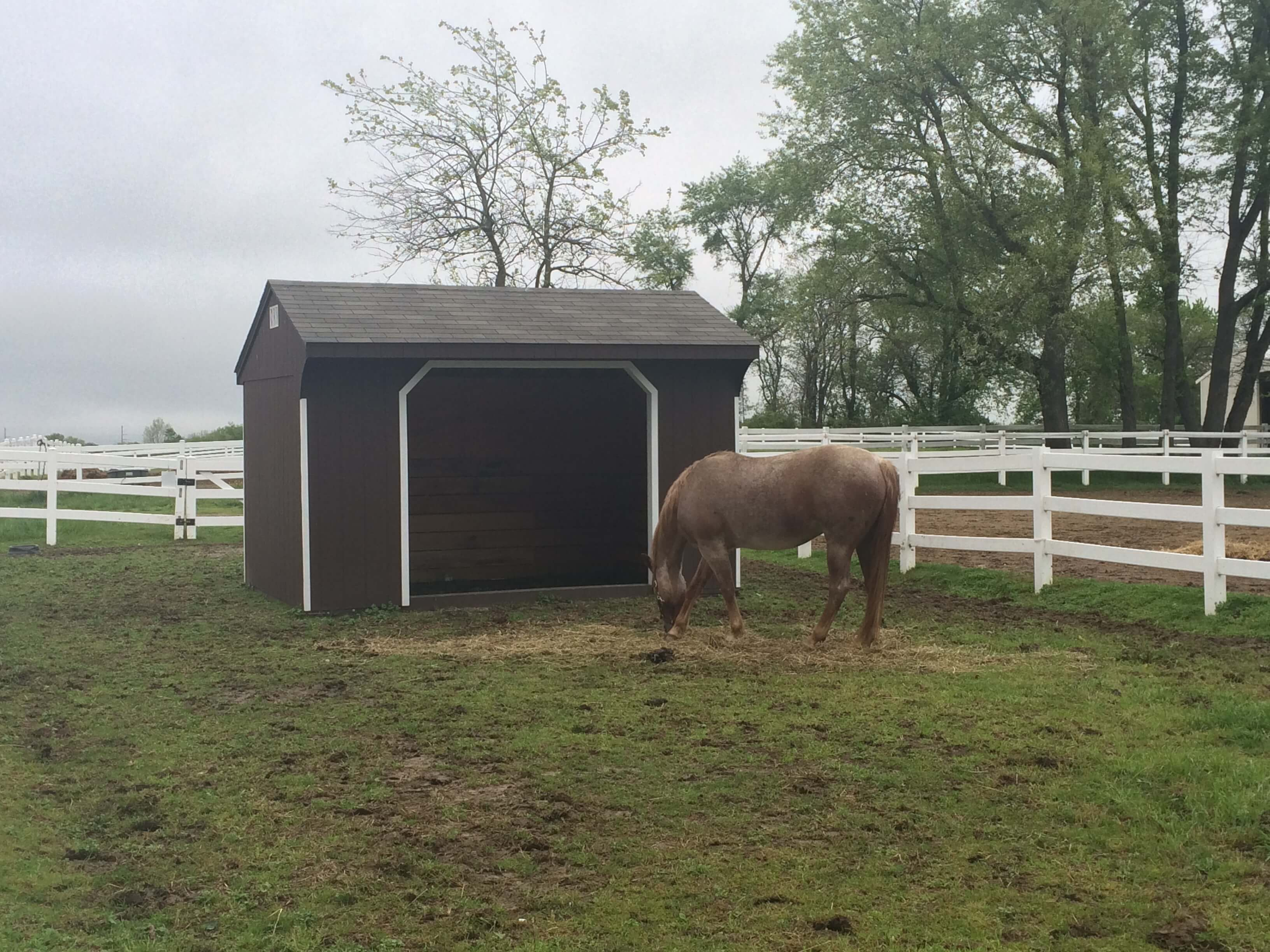 Run-In Horse Shed.